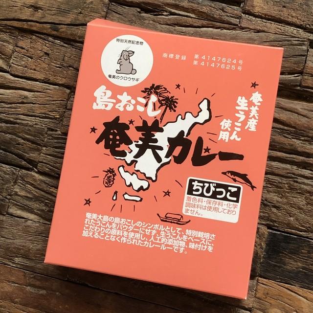 奄美の無農薬ウコンのスパイスカレー粉【ちびっこ】画像