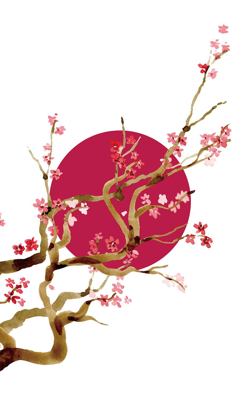 陽紅梅(あみど)画像