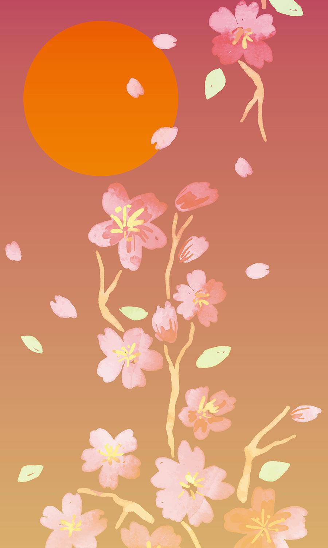 夕桜(あみど)画像