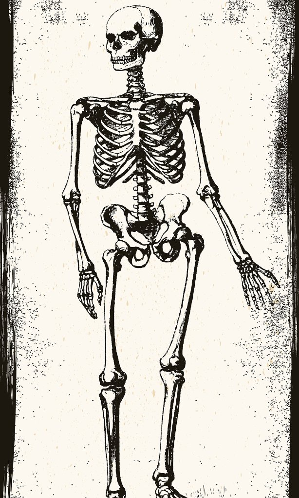 ターヘル・アナトミア(あみど)の画像