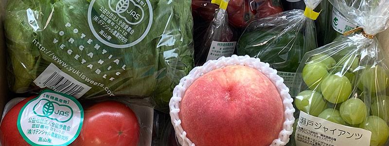 標高750m、位山の麓にあるポテンシャル農業研究所さんの畑で作ったお野菜をお届けします。
