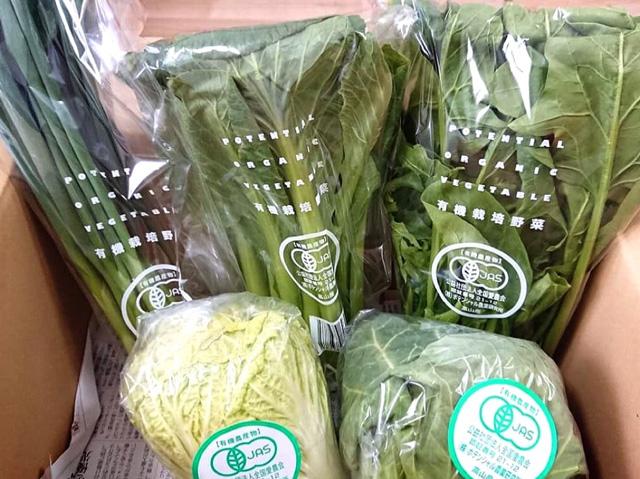 ポテンシャル農業研究所 小さな野菜セット(定期コース全4回)の画像