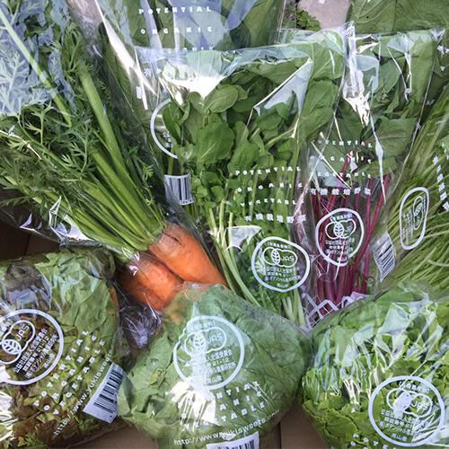 ポテンシャル農業研究所  おまかせ野菜セット画像