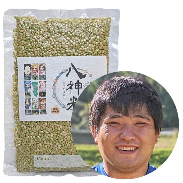 菅原自然栽培「緑米」画像