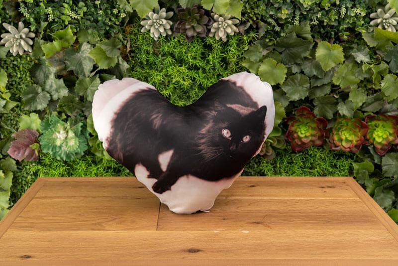かわいいハートの形で作る!うちの子ハートクッション 画像