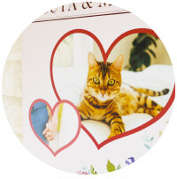 うちの子木製写真パネルのご購入にオススメのシーン3。ご結婚式のウェルカムボードに