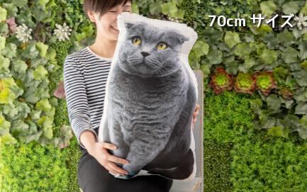 70cmサイズは大きいサイズ