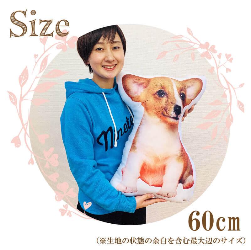 うちの子オリジナルクッションのサイズ