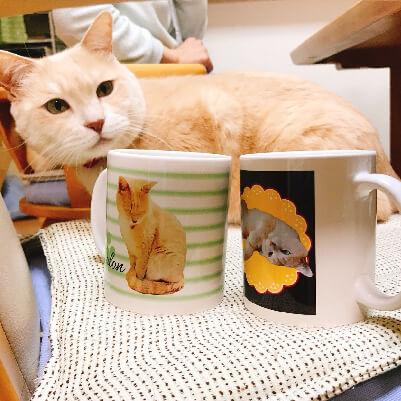 うちの子オリジナルマグカップへのお客様の声M様