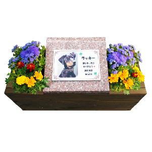 専用のプレート付き ペットちゃんの手元供養専用のお墓