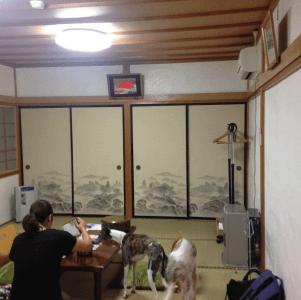 薬研荘のお部屋