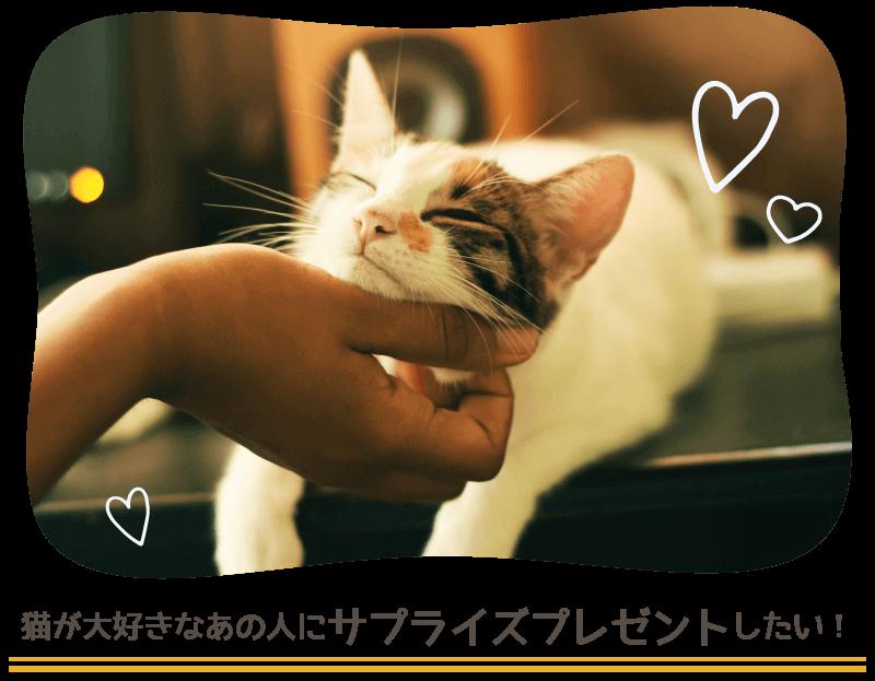 猫好きなあの人へサプライズプレゼント