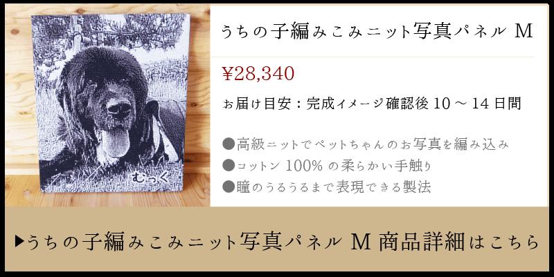 ニット写真パネルMサイズの商品詳細