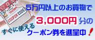 5万円以上のアンティーク家具購入で使用できる3000円のクーポン券