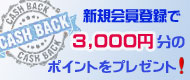 シェリーズ アンティークスの会員登録で3000円をキャッシュバック