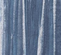 柳絞り 青の画像