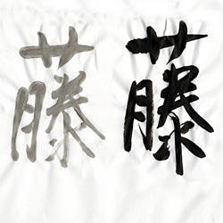 書道用紙 全紙 藤画像