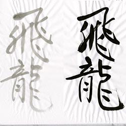 書道用紙 全紙 飛龍の画像