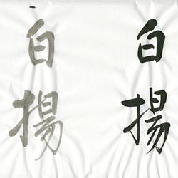 書道用紙 半紙 白揚の画像