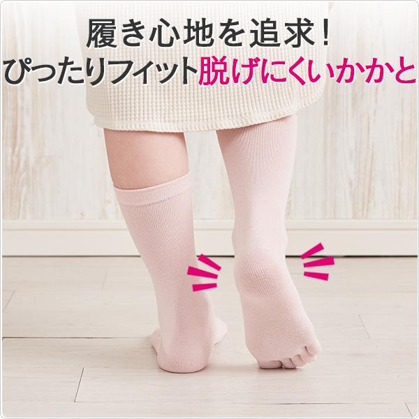綿5本指靴下(5足組)画像