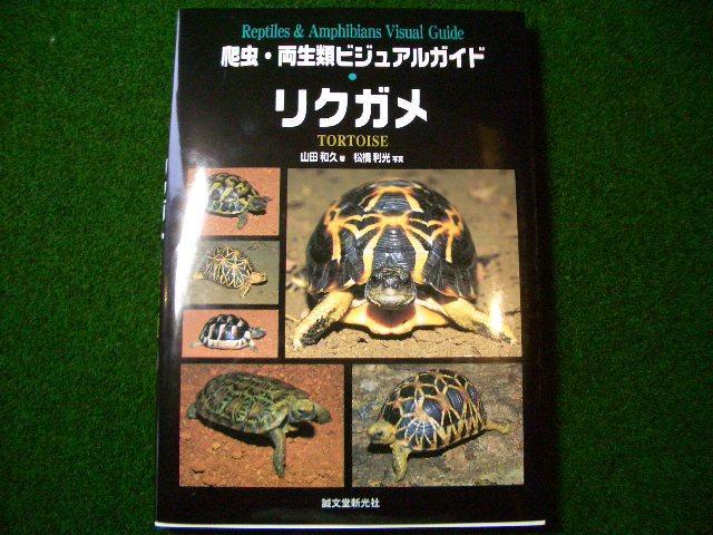 爬虫・両生類ビジュアルガイド リクガメ (メール便対応)画像