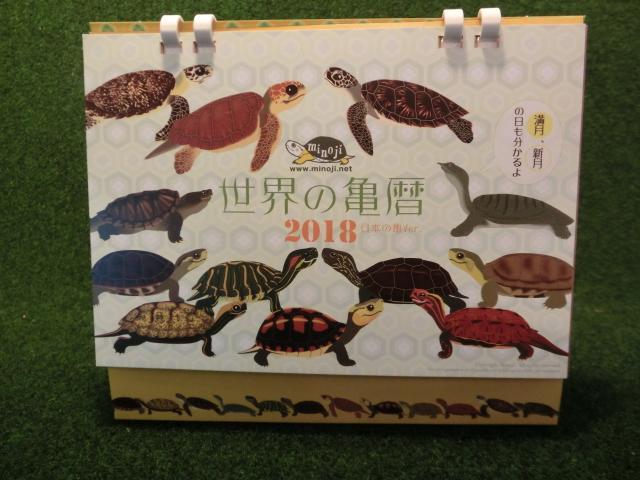 世界の亀暦 日本の亀バージョン 卓上型2018 (DM便対応 )画像
