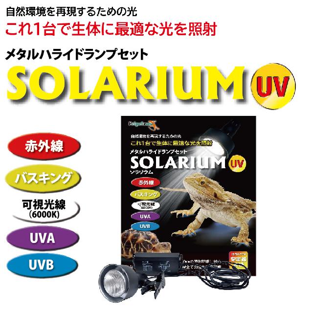 SOLARIUM ソラリウム50Wセット の画像