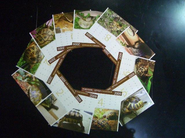 2009年トータス・スタイル オリジナルカレンダーの画像