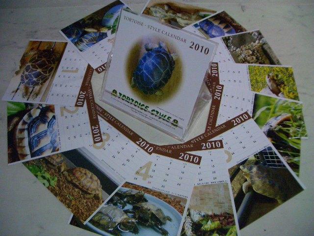 2010年トータス・スタイル オリジナルカレンダー画像