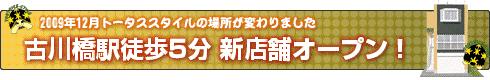 リクガメ専門ショップ 古川橋駅徒歩5分