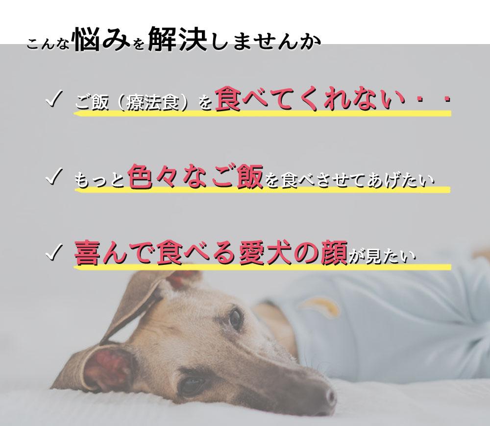 愛犬が腎臓病の場合の悩み