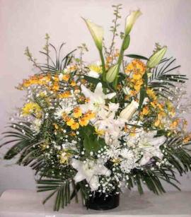 【フューネラルムーン】 蘭とユリのかご花の画像