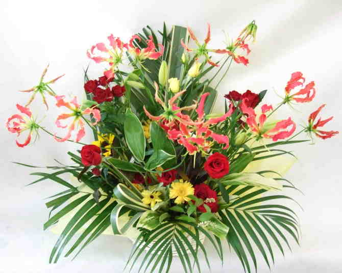 【キュートセレブリティ】 バラとグロリオサのアレンジメント画像