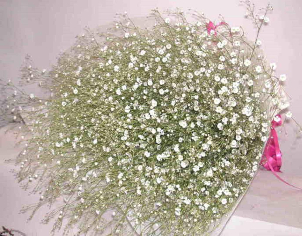 【粉雪】 無垢の花束画像