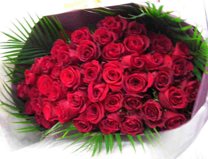 【レッドルビー】 赤バラ108本 プロポーズの花束の画像