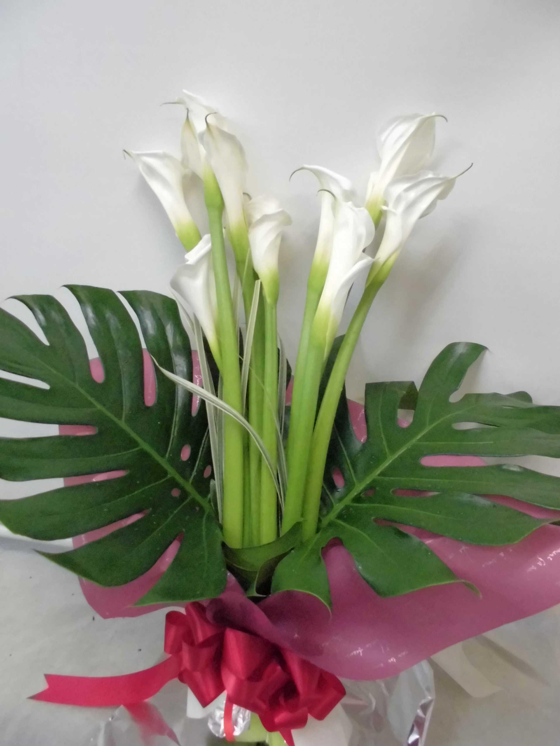 純真カラーの花束画像