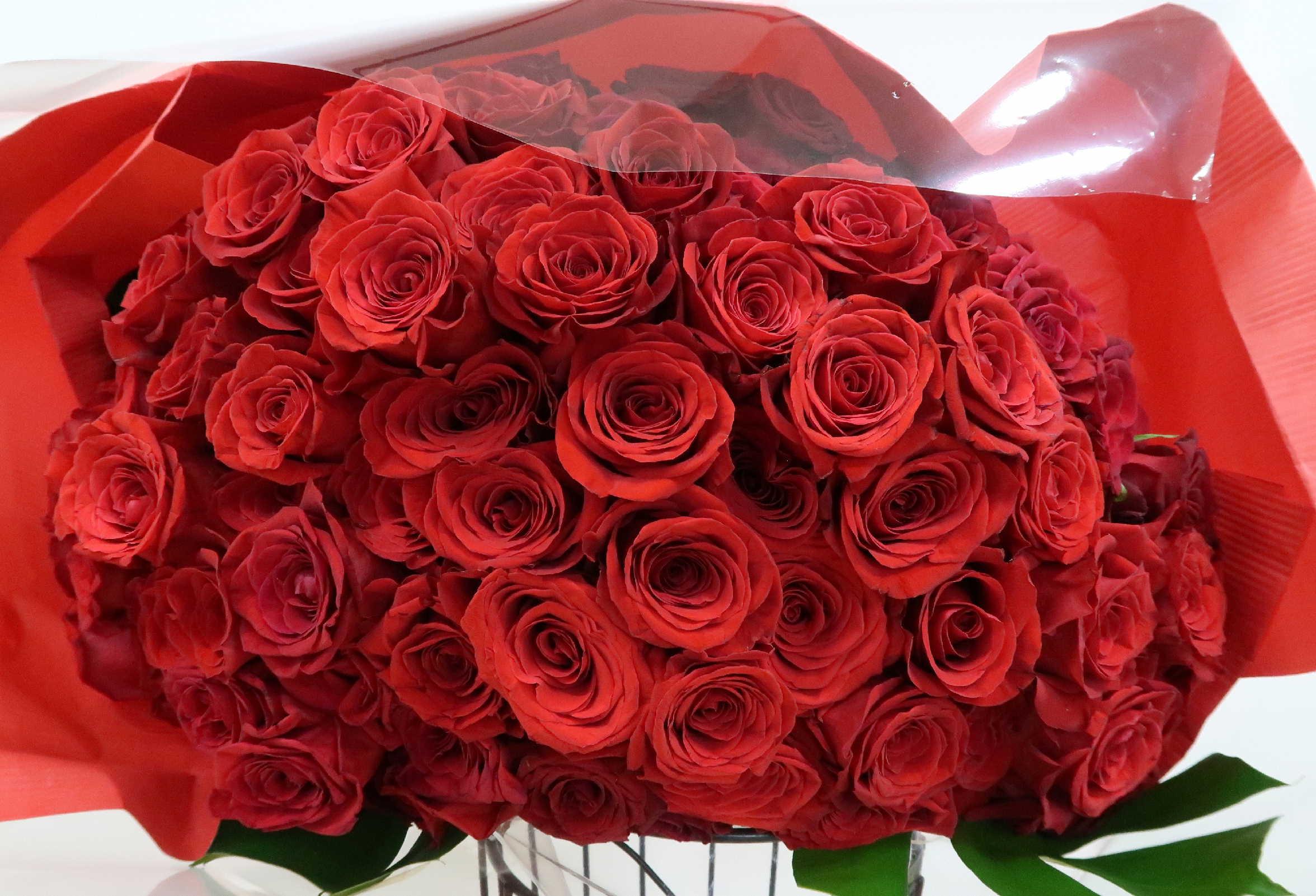【イグニス】 特級・大輪赤いバラ108本の花束画像