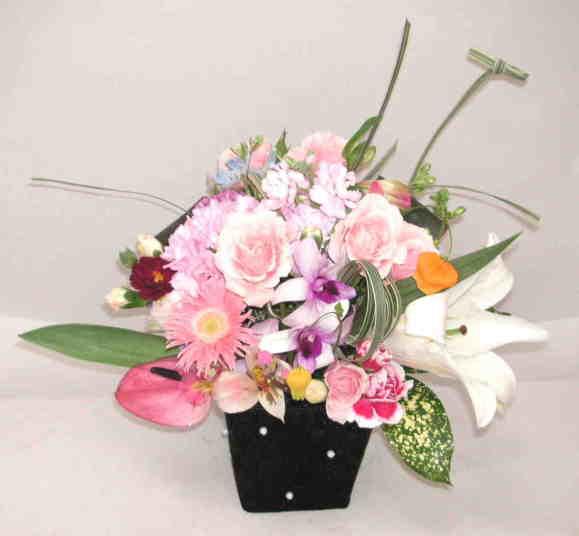 【スイートフルーティ】 バラとガーベラのアレンジメント画像