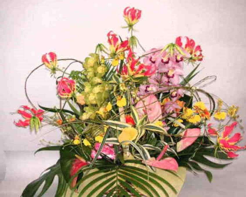 【華の舞リリース】グロリオサと蘭のアレンジメントの画像